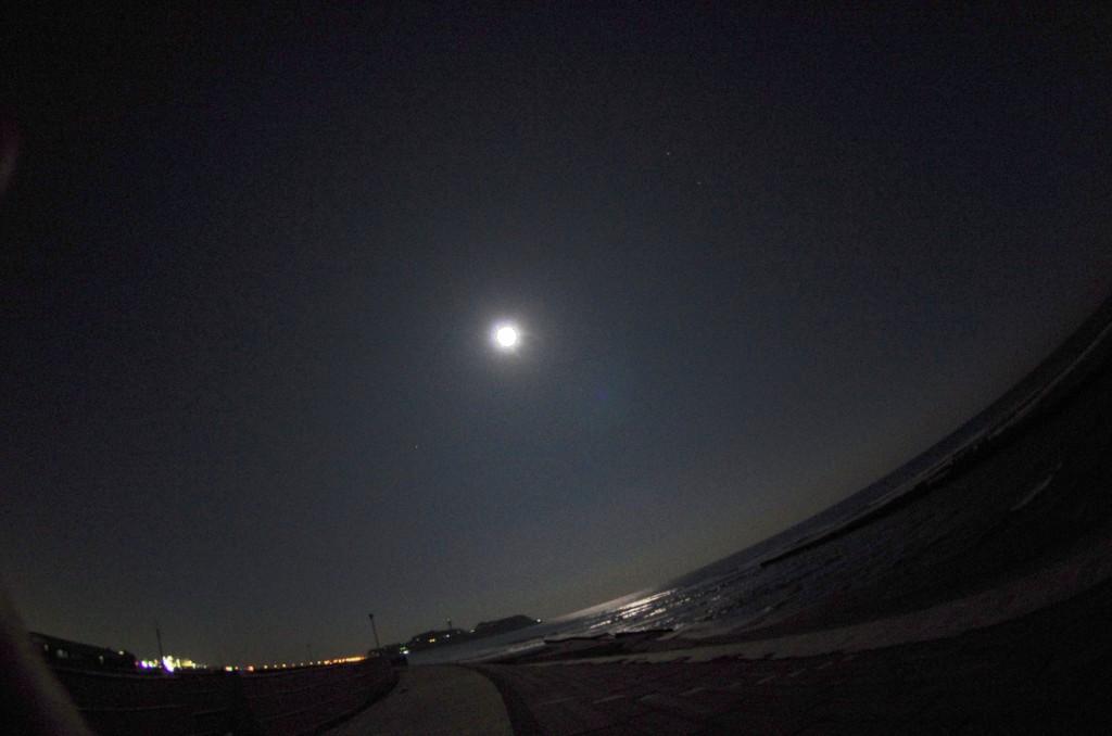 夜海に漂うお月さん