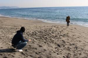 七里ヶ浜海岸を散歩