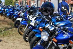 さすが、team-blue!青、青、青!!